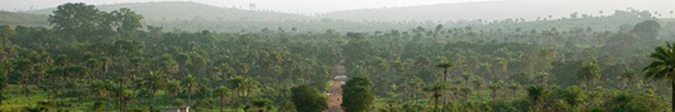 Sahaja Yoga Sierra Leone header image 2