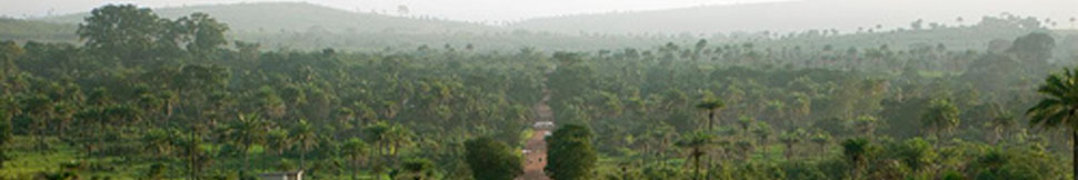 Sahaja Yoga Sierra Leone header image 3